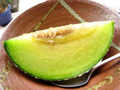 Melon87ef9